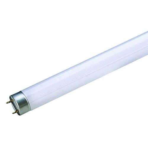 Tube fluocompact T8