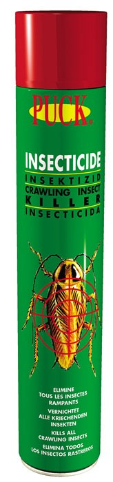 Insecticide rampant - Aérosol 750ml