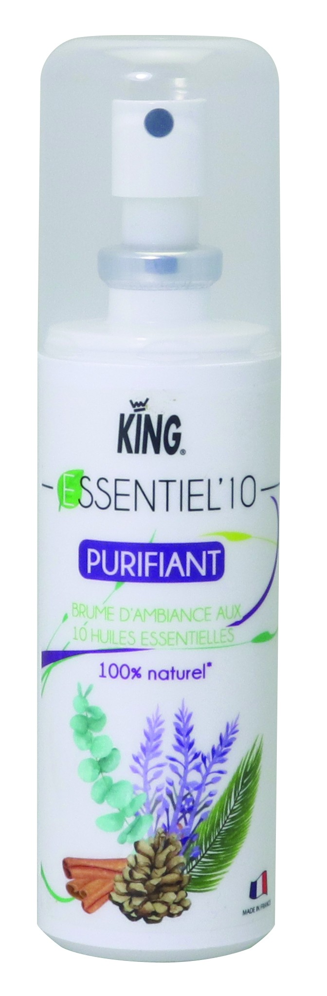 ESSENTIEL'10 PURIFIANT 100CC KING
