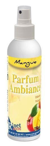 R'net - Mangue - Parfum d'ambiance - Spray 250ml - Carton 6