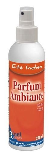 R'net - Été Indien Parfum d'ambiance - Spray 250ml - Carton 6