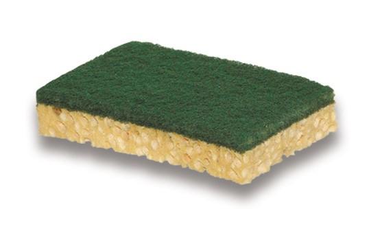 Tampon sur éponge vert - Sachet 10